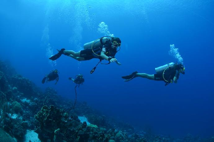 Drive & Dive Package - 2